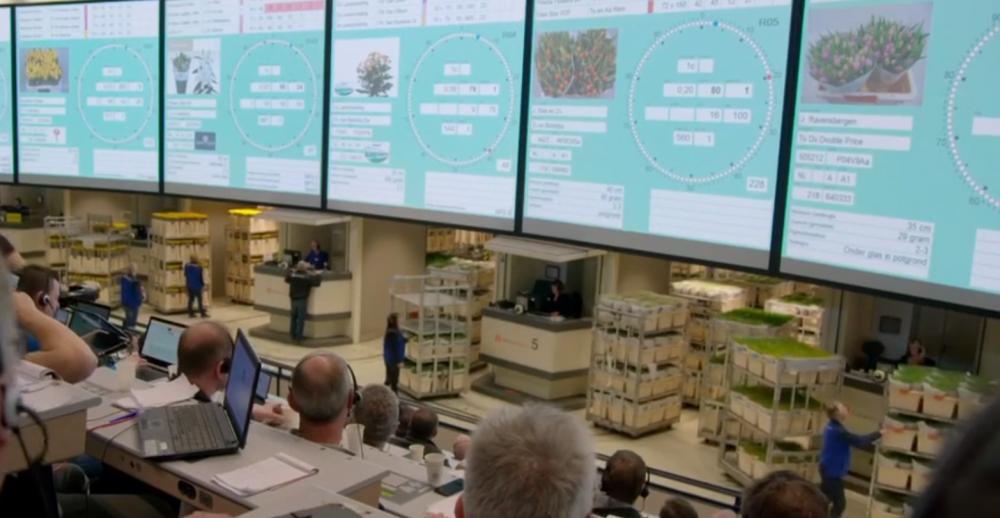 世界最大的鲜花市场是如何进行物流运作的?